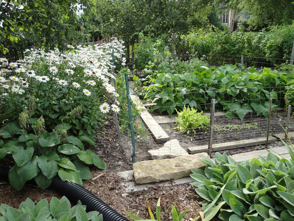 Planning a vegetable garden in your waukesha yard for Planning your vegetable garden