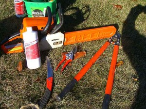 Tools used for stump method of Buckthorne removal in Waukesha