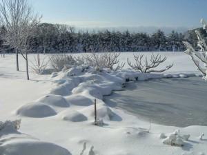 winter_landscape_wisconsin_8