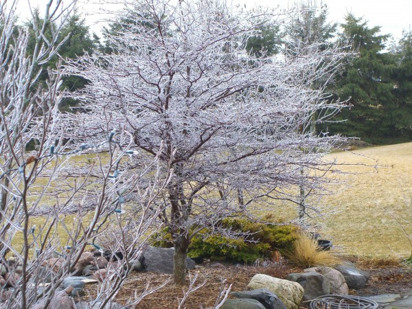 march wisconsin weather landscaping waukesha tips