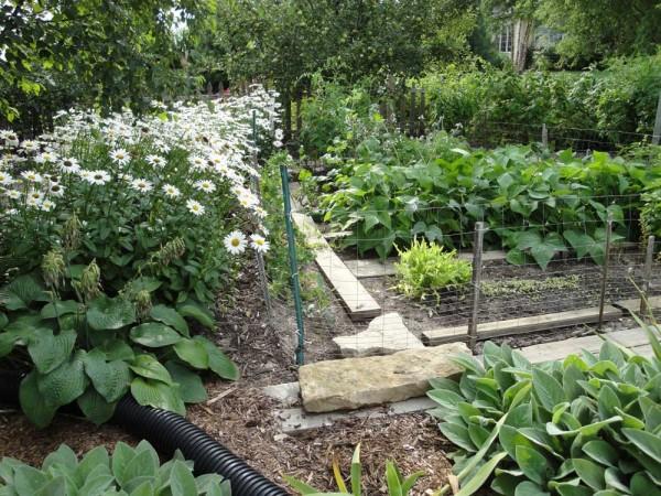 Planning a Vegetable Garden in your Waukesha yard